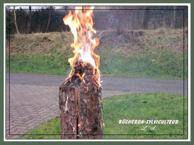 Buche suédoise en feu